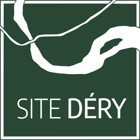 Logo site Déry